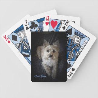Steenhoop Terrier - de Speelkaarten van de Pook Pak Kaarten