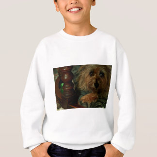 Steenhoop Terrier Trui