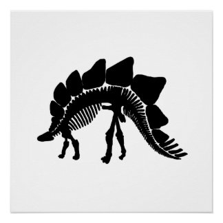 stegosaurus skelet perfect poster