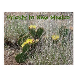 Stekelig in New Mexico Briefkaart