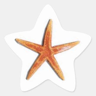 Ster gevormde zeestersticker stervormige sticker