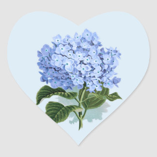 Sticker van de Bloem van de Hydrangea hortensia