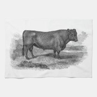 Stieren van de Koe van de vintage Illustratie van Theedoek