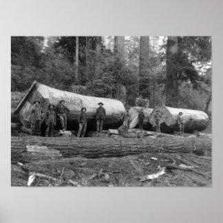 Stoom die de Cascades van Washington Stat het prog Poster