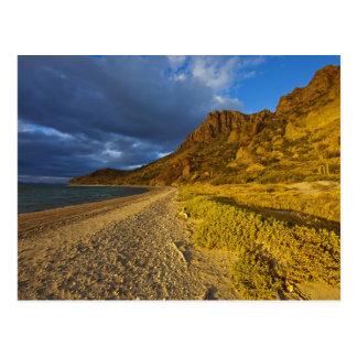 Stormachtig licht op Trambestuurders Isla in de Briefkaart