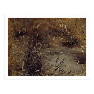Stormlopen door een Pool, c.1821 (olie op papier Briefkaart