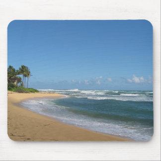 stranden op Kauai Muismatten