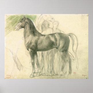 Studie van een paard met cijfers poster