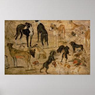Studie van Honden, 1616 Poster