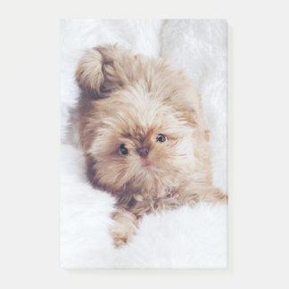Stuiver de oranje nota van de het puppyPost-it van Post-it® Notes