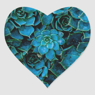 Succulent Plant Hart Sticker