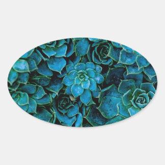 Succulent Plant Ovale Sticker