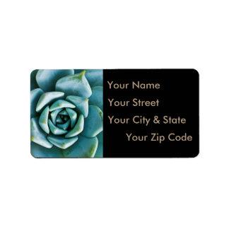 Succulente Close-up Etiket