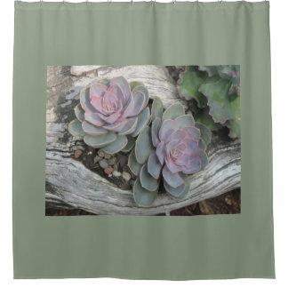 Succulente Echeveria Douchegordijn
