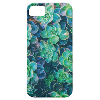 Succulente Succulents, Cactus, Groene Cactussen, Barely There iPhone 5 Hoesje
