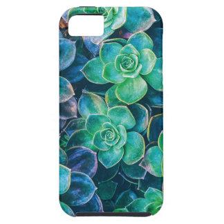 Succulente Succulents, Cactus, Groene Cactussen, Tough iPhone 5 Hoesje