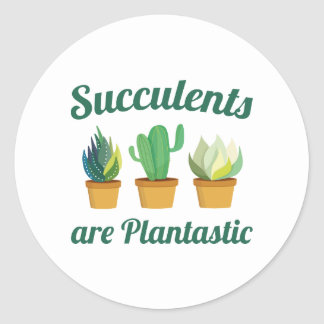 Succulents is Plantastic Ronde Stickers