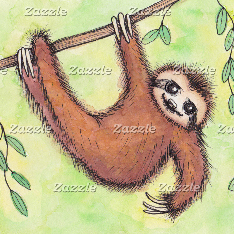 Sloths & Other Cute Critters