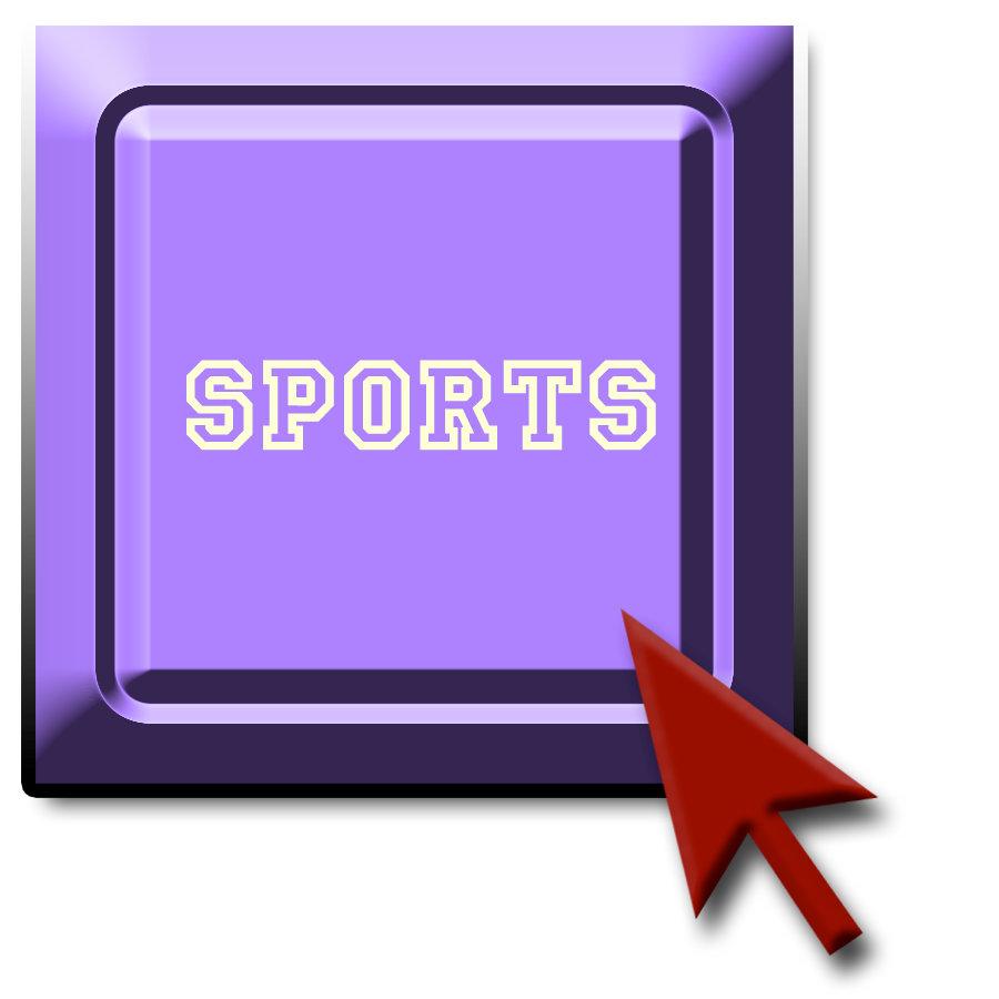 Sports -- Wild Animal League