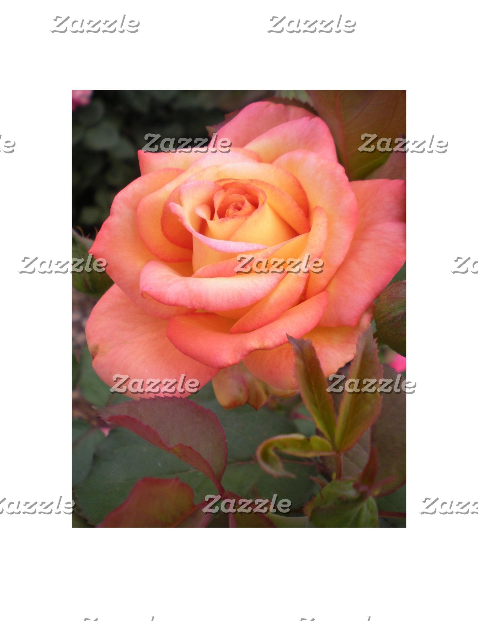 Peach Rose Designs