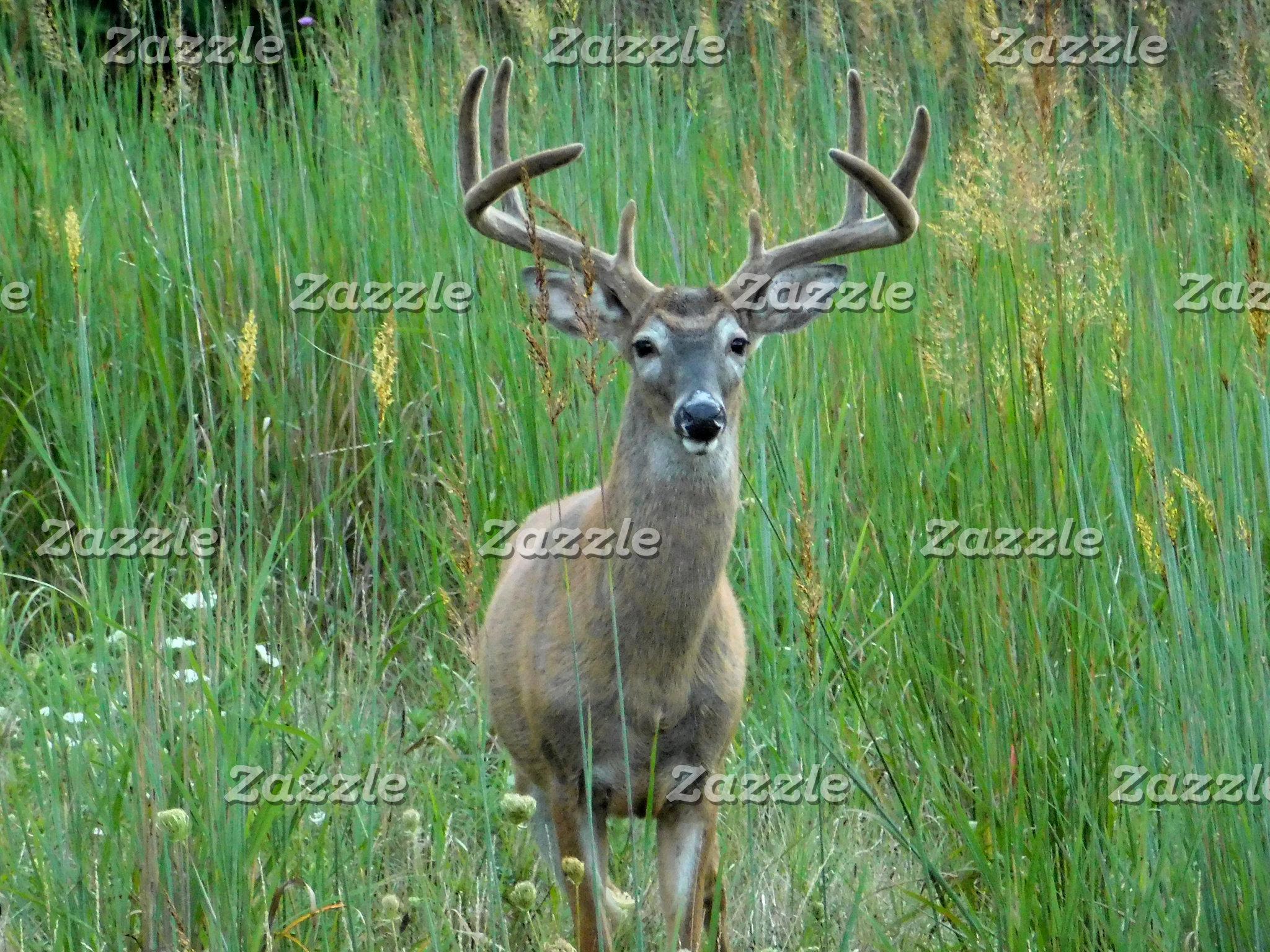 Wildlife Products