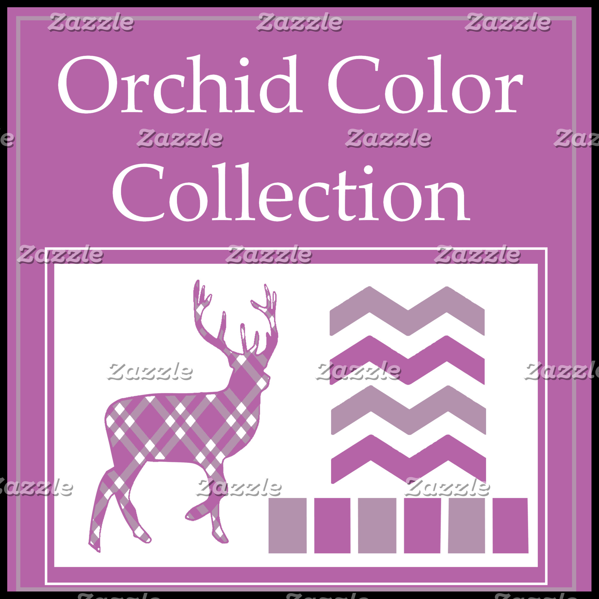 Orchid Colors