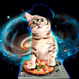dj cat - space cat - cat pizza - cute cats