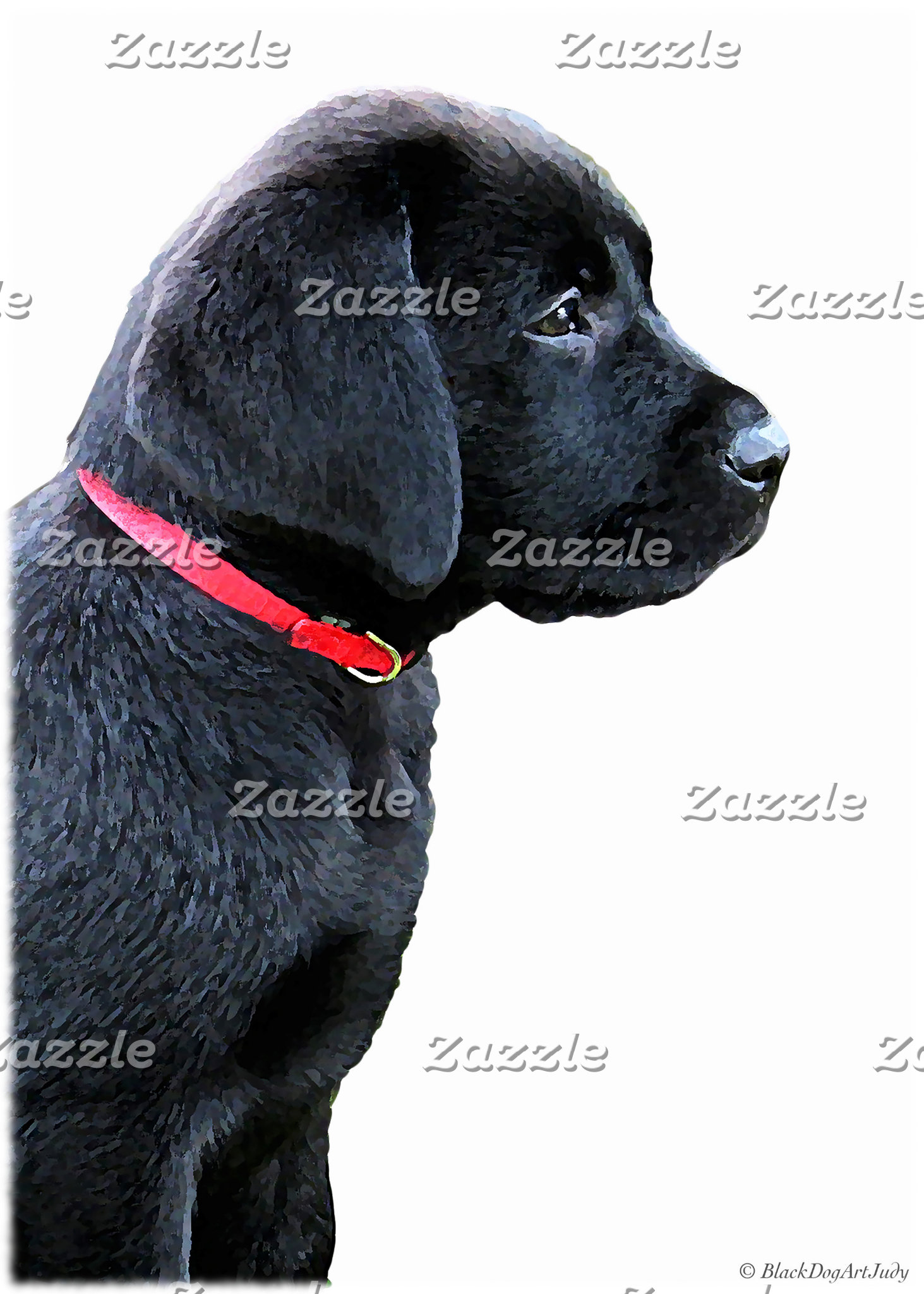 Black Labrador - Dressed in Red