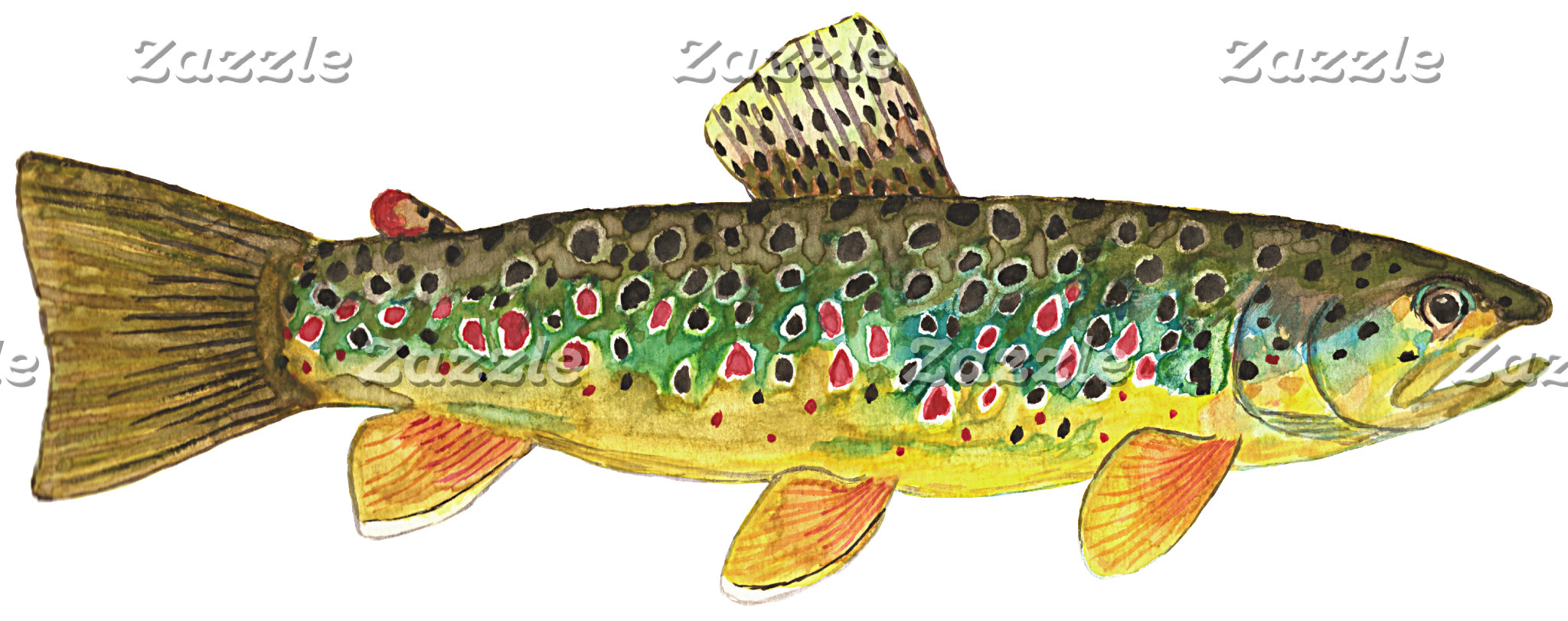 . BROWN TROUT