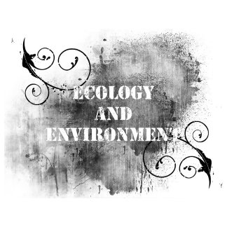 Ecology And Environment