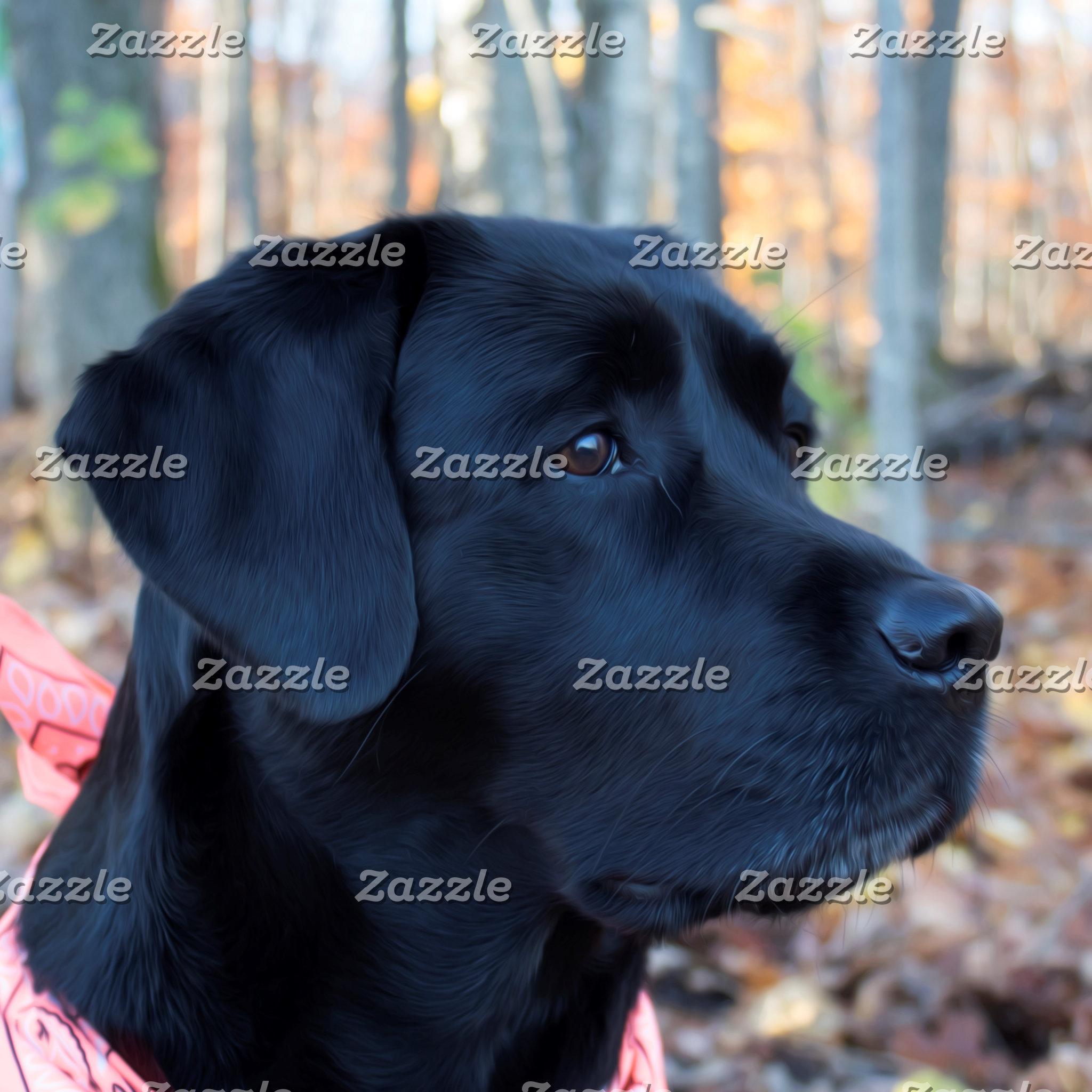 Black Labrador - Autumn Glow