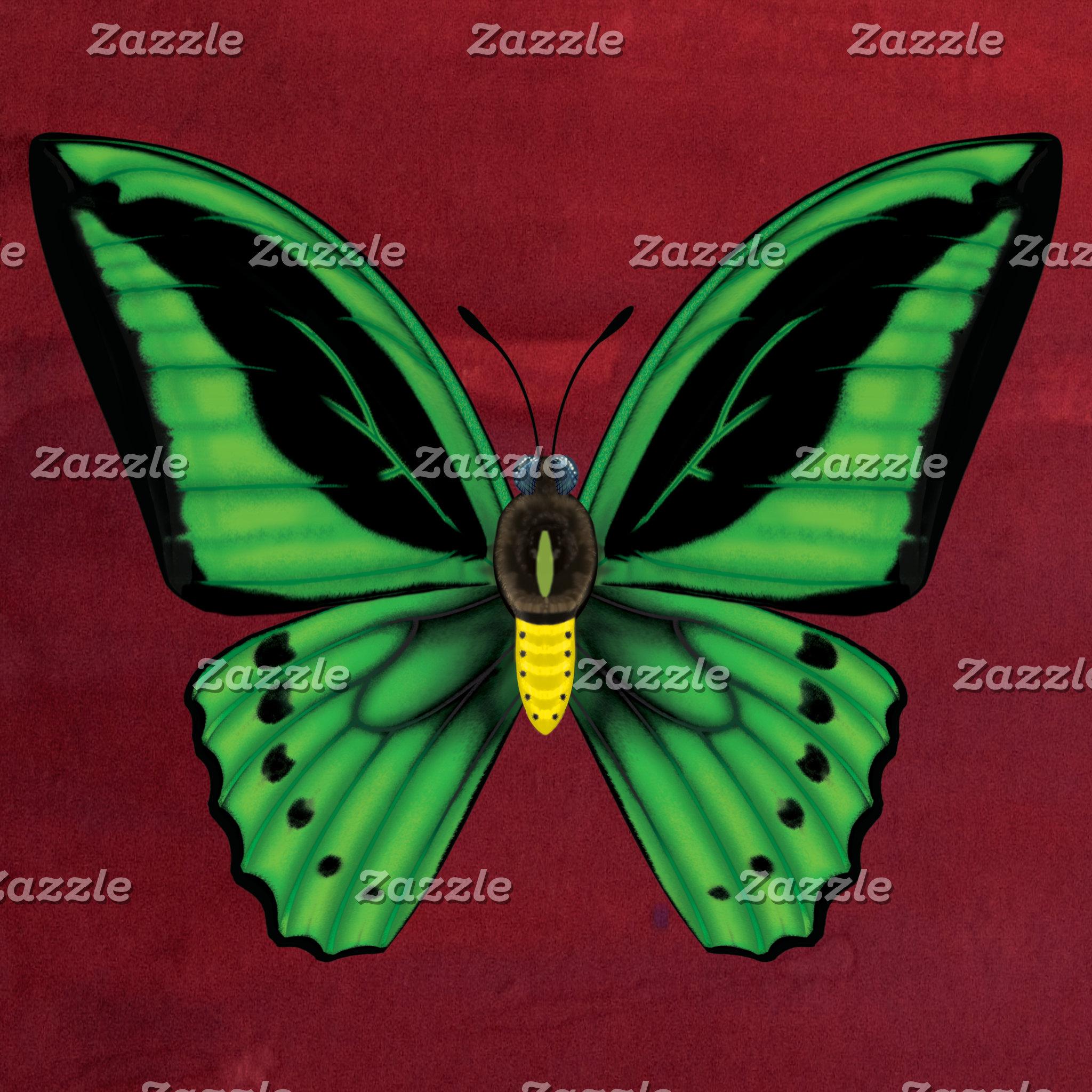 Cairns Birdwing Butterfly
