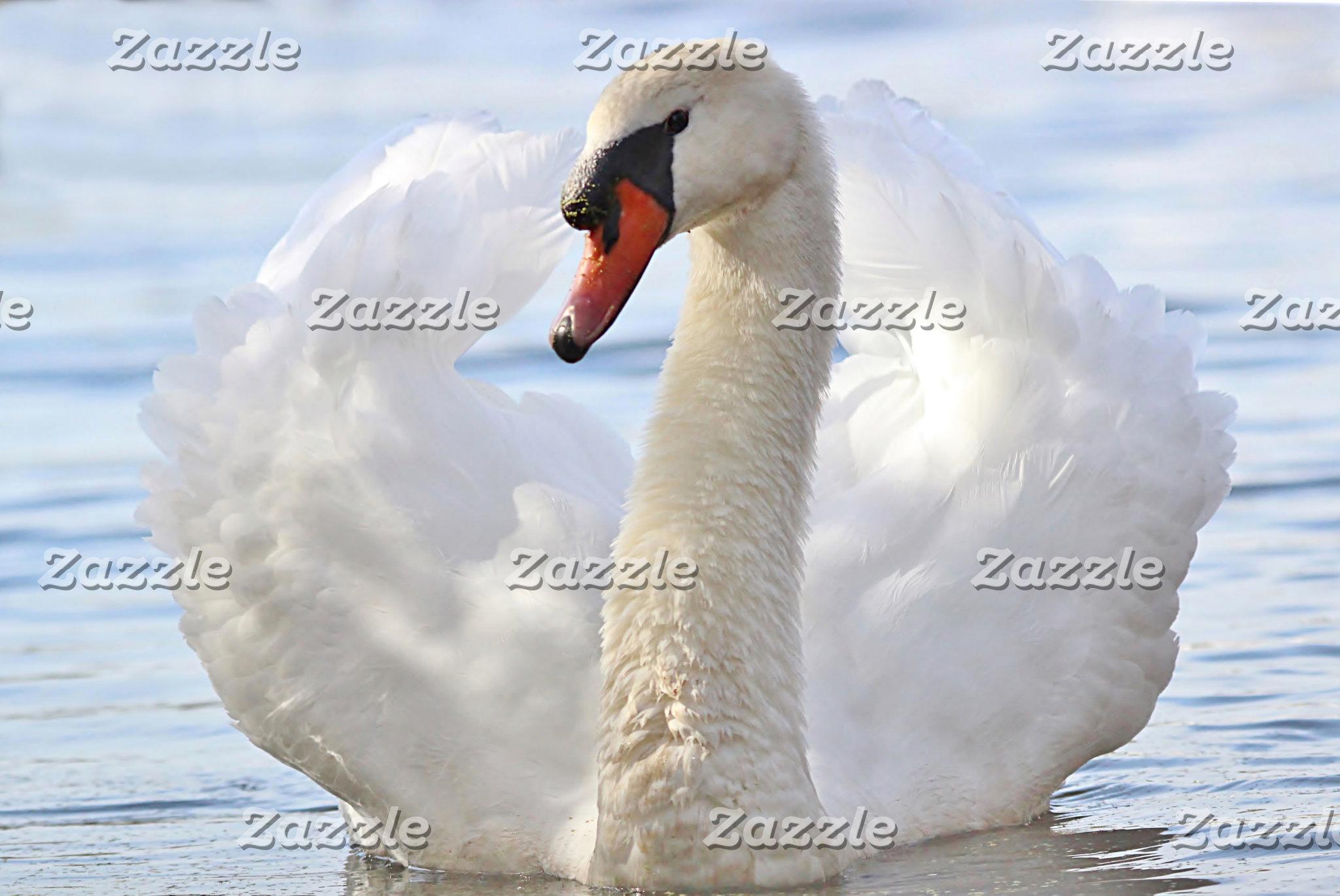 Water birds and Shore birds
