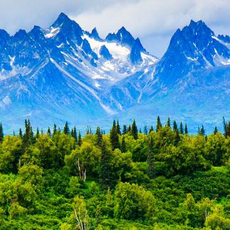VS bergen