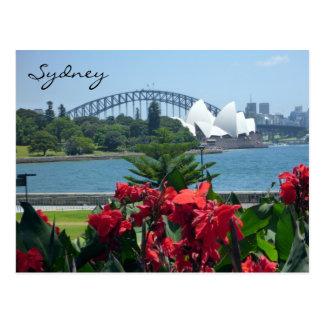 Sydney havenflora briefkaart