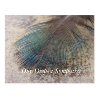 Sympathie, de Kleurrijke Vogelveer van de Pauw Briefkaart