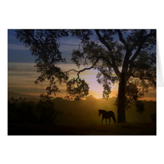 Sympathie voor verlies van paard eiken boom en briefkaarten 0