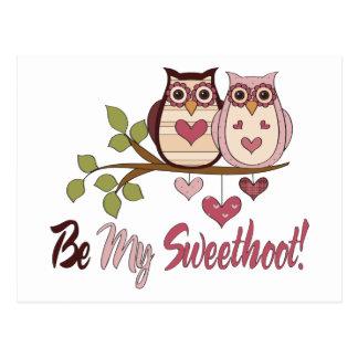 T - shirts van de Uilen van schattig Valentijn de Briefkaart