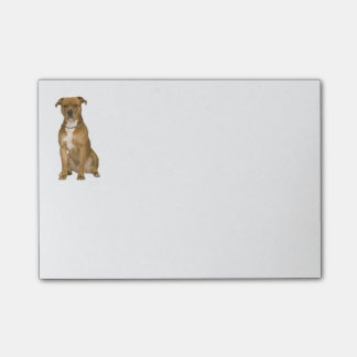Tan Amerikaanse Staffordshire Terrier Hond - Post-it® Notes