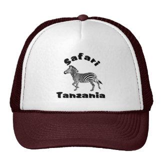 Tanzania dat het Gestreepte Pet van de Safari in