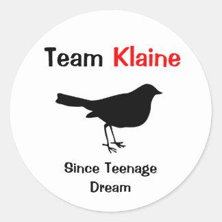 Team Klaine Ronde Sticker