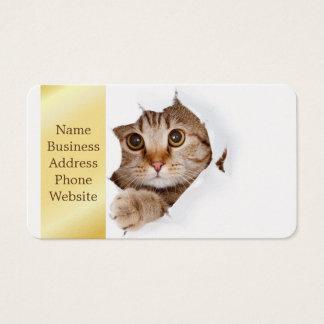 Tearing document dat van de kat - kat kijkt - visitekaartjes