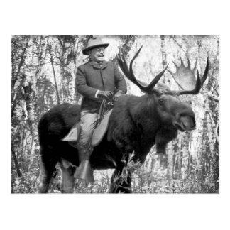 Teddy Roosevelt die een Amerikaanse eland van de Briefkaart