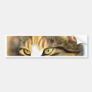 Tevreden Kat Bumpersticker