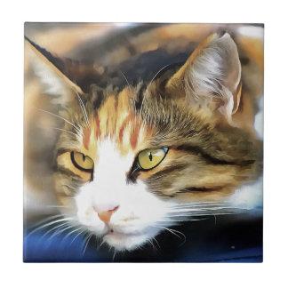 Tevreden Kat Keramisch Tegeltje