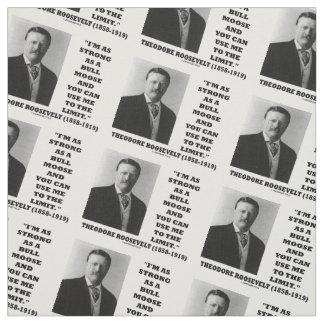 Theodore Roosevelt ben ik zo Sterk zoals een Stof