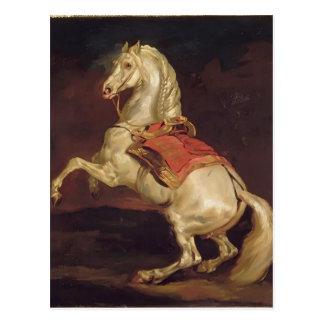 Theodorus II Gericault: De Hengst van Napoleon, Briefkaart
