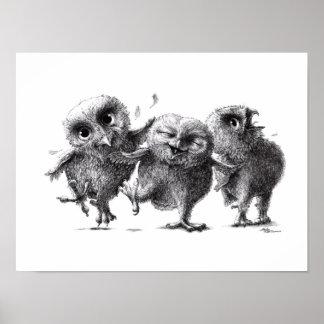 Three Crazy Owls - Corujas Poster