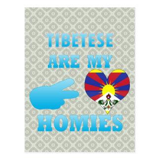 Tibeteses is mijn Homies Briefkaart