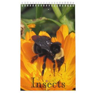 Tijdschema - Insecten (sgl. pg.) Kalender